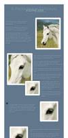 tutorial: -- simple equine eyes. by PoeticJustice314