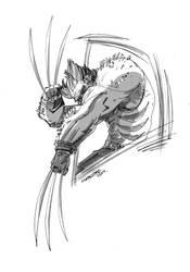 Wolverine by marespro13