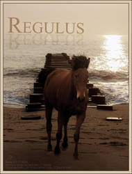 Regulus by altered-humanity