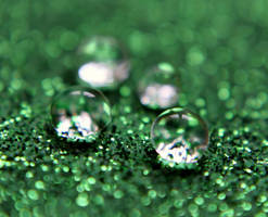 Green Drop by TorriaMuse