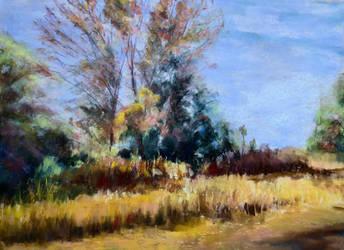 Tewksbury landscape NJ by Wulff-Arts
