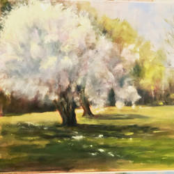 MAGNOLIA TREES by Wulff-Arts