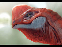 Oviraptor by Shaka-zl