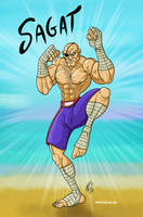 SAGAT tribute by Gmeliss