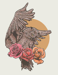 owl and roses by novrian