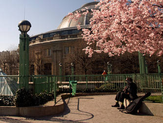 Spring in Paris by szymonomyzs