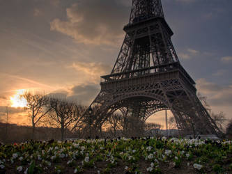 Springtime in Paris by szymonomyzs