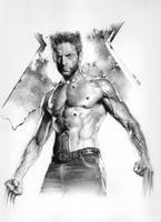 X-Men Wolverine by RobertoDS