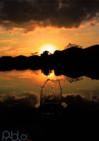 Sun Splash by pablo12288
