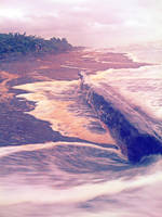 Adrift by emshore