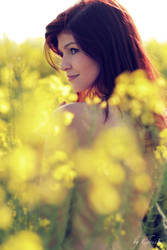 Summer's Welcoming VI by ChrisK-photo