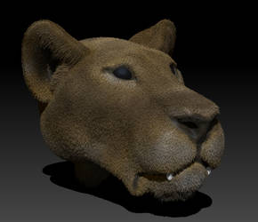 Lioness Bust by NeedAssistance