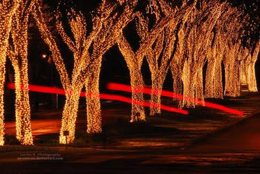Christmas Spirit by oO-Rein-Oo