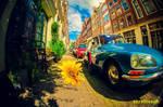 Sunny Amsterwonderland take iv by oO-Rein-Oo