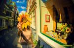 Sunny Amsterwonderland take vi by oO-Rein-Oo