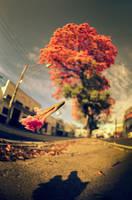 Fall Of A Flower by oO-Rein-Oo