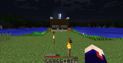 Minecraft - Home by raetara