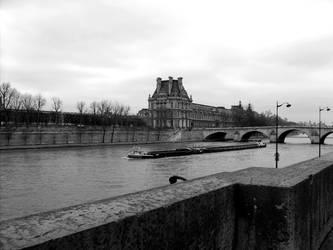The Seine river - Paris by rd80770