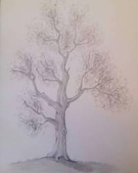 Landscape practice - Oak tree by frantastic-scribbles