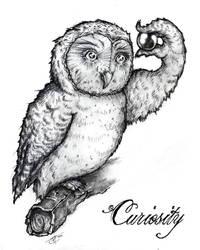 Curiosity by SirPedroEC
