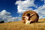 Alentejo hay fields II by PeterLime