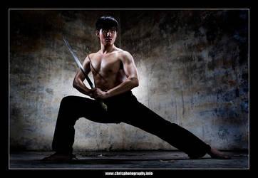 Swordsman by christophertan