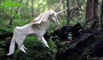 The Magical Unicorn by FoldedWilderness