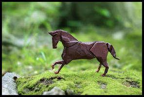 Year of the Horse in Origami by FoldedWilderness