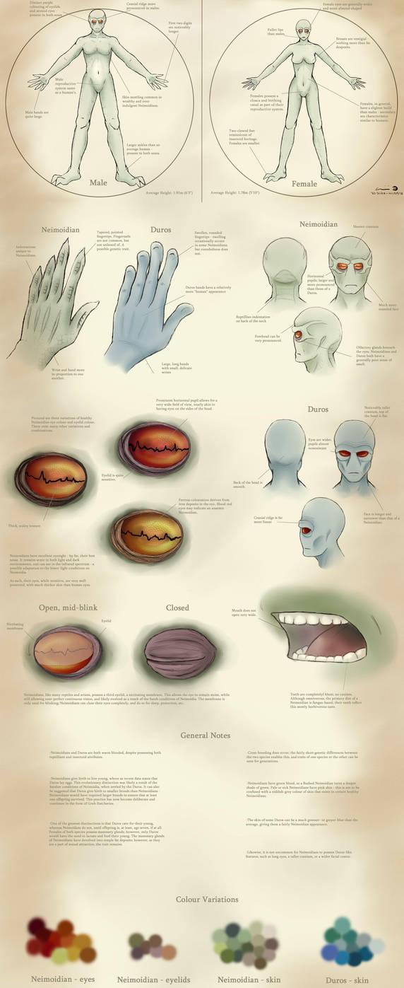 A Study of Neimoidians by Kweh-chan