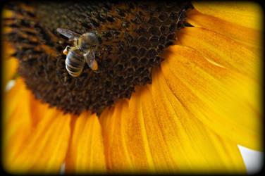 Working Hard For My Honey by Ellethwyn