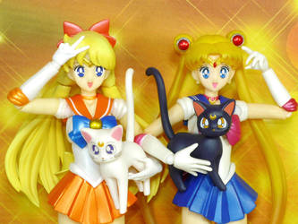S.H. Figuarts Sailor Moon and Sailor Venus by MoonCollectar