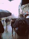 any kind of rain. by EmilyEatworlD