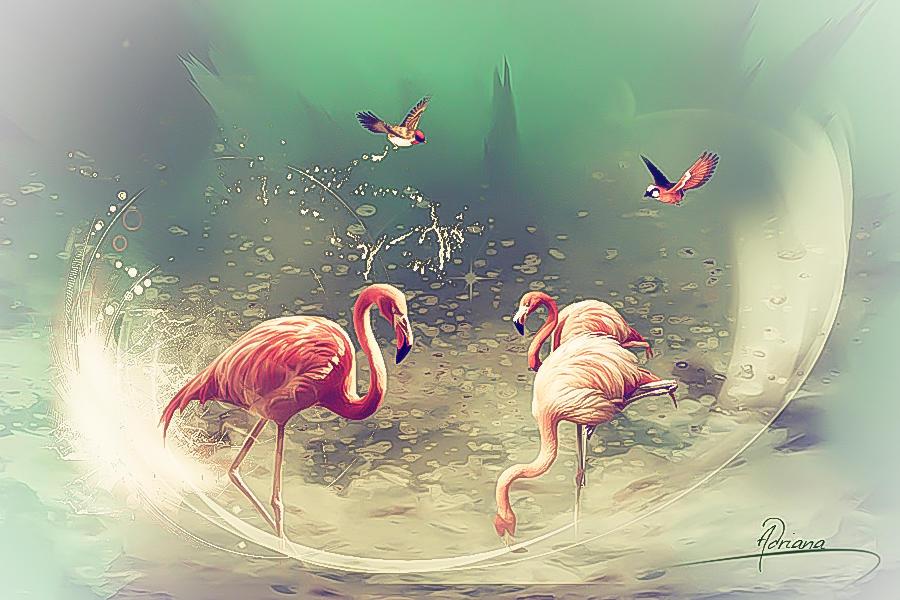 Flamingos 2 by Adriana-Madrid