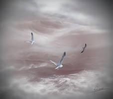 Seagulls by Adriana-Madrid