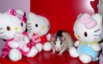 Peachy and Hello Kitty's by Sorayachi