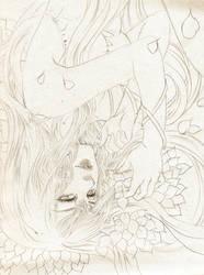 Petals by meisan