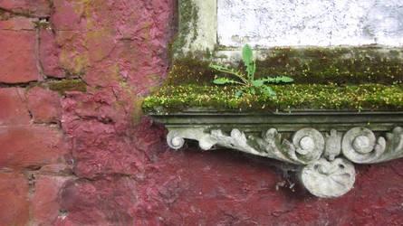 Frame corner by Sarasai