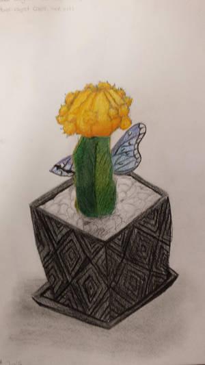 My Cactus :3 by TigerLove566