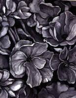 Flowers by CloneTheStillBorn