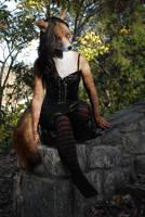 Fox on Rocks (In Socks!) by pythos-cheetah