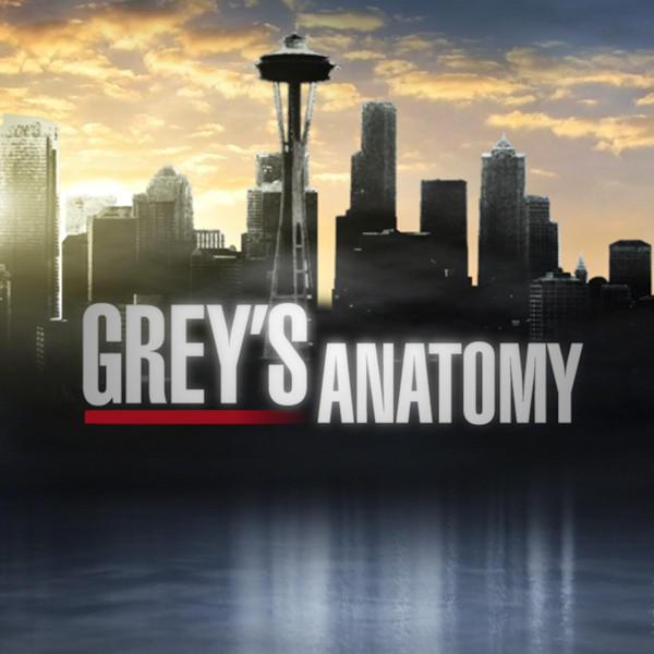 Abcs Greys Anatomy By Mildor666 On Deviantart