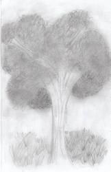 My First Sketch by Relaen