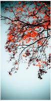 Autumn by dusti-san