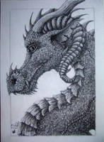dragon portrait by chaosia