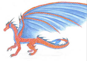nahi's dragon by chaosia