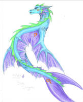 sea dragon coloured finally by chaosia