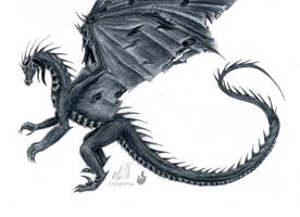 Black Dragon Request by chaosia
