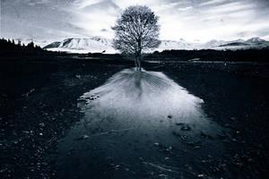 cold by Mushy-Gushy
