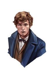 Newt Scamander by TeenAgeteem