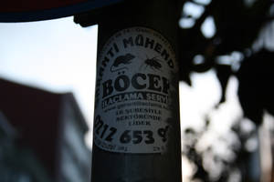 Pole I by RinoTheBouncer